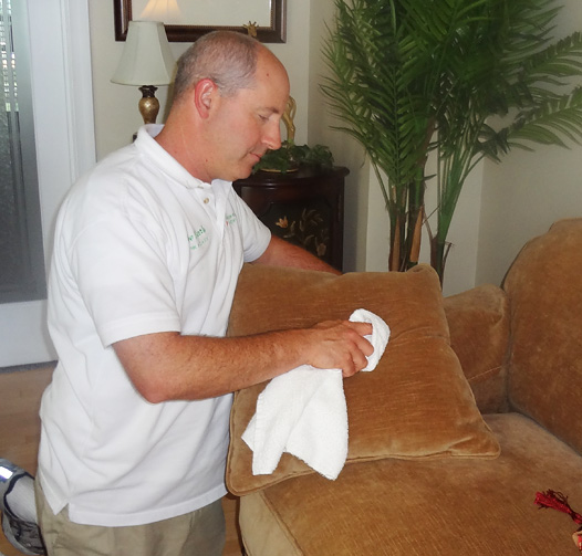 Sewell Upholstery Cleaning